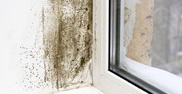 Cómo prevenir y quitar la humedad del baño - ¡Remedios caseros!